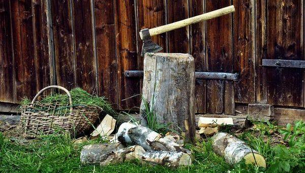 Sprzedaż drewna opałowego w Rybniku