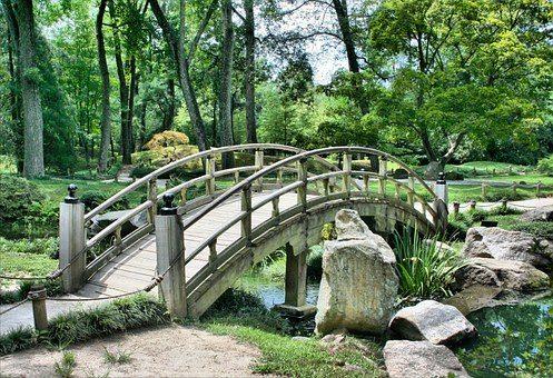 Jak wybrać firmę oferującą projektowanie ogrodów?