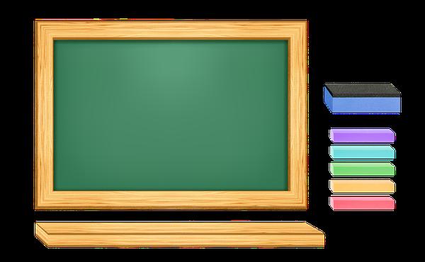 stegna zielone szkoły