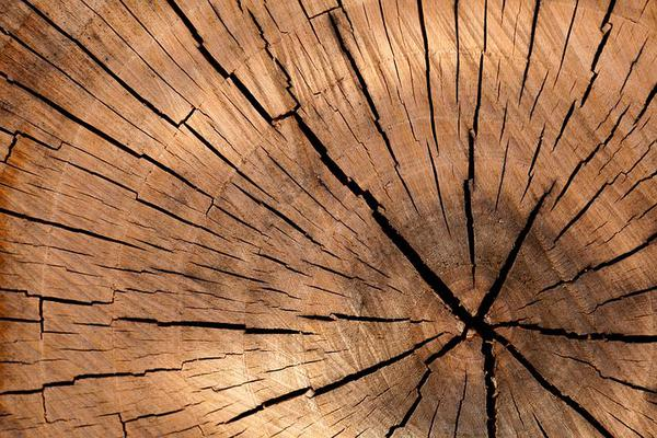 optymalizerka do drewna